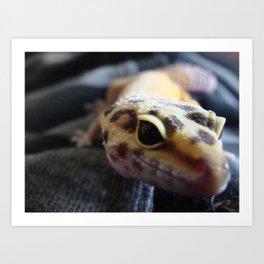 Gecko Art Print