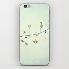 love is in the air... iPhone & iPod Skin