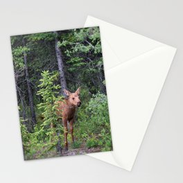 Young moose Stationery Cards