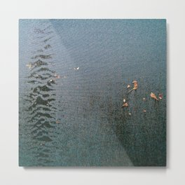 Sticky Leaves Metal Print