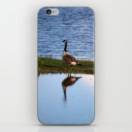 Goose Reflection iPhone Skin
