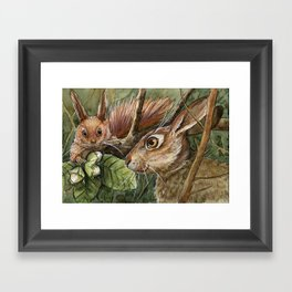 Bunny, squirrel and nuts A068 Framed Art Print