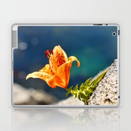 Beauty by the Waters Laptop & iPad Skin