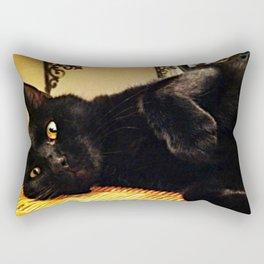 Golden Eyes Rectangular Pillow