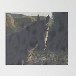 Wild stallion photo, black horse and italian sunset, original print for animal lovers, landscape Throw Blanket