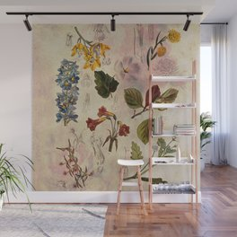 Botanical Study #1, Vintage Botanical Illustration Collage Wall Mural