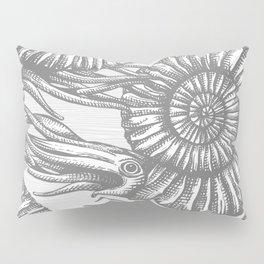 AMMONITE COLLECTION GRAY Pillow Sham