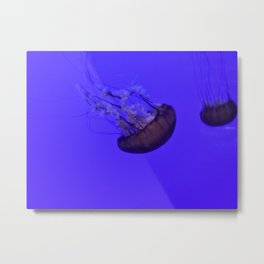 Majestic Jellyfish Metal Print
