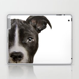 Pitbull Dark brown Dog illustration original painting print Laptop & iPad Skin