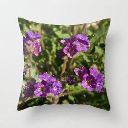 Notch-Leaved Phacelia - Desert Wildflower Throw Pillow