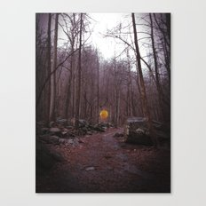 Lone Balloon Canvas Print