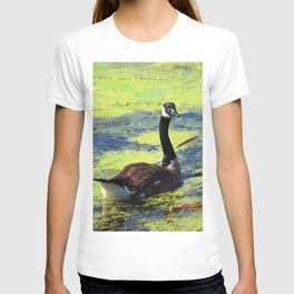 Goosie Gander T-shirt