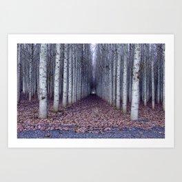Poplar Plantation Art Print