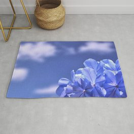 Bloom Where You Are Planted III - Nature Photography Rug