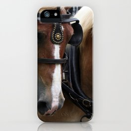 Sharing the Load iPhone Case