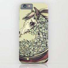 Beautiful Horse Old iPhone 6s Slim Case