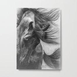 Arabians II Metal Print