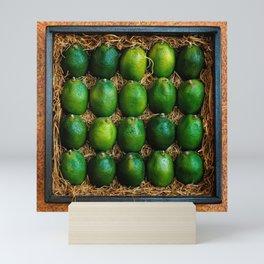 Box of Limes Mini Art Print
