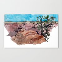 a rip in the earth Canvas Print