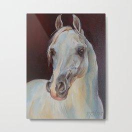 Arabian Horse portrait Gray horse head horse painting Metal Print