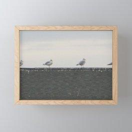 The Four Seagulls of the Apocalypse Framed Mini Art Print