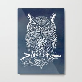 Warrior Owl Night Metal Print