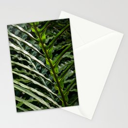 Forest Floor Frond Stationery Cards
