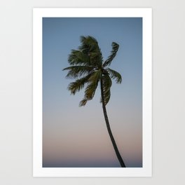 Palms of Paradise Art Print