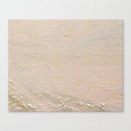 B3 Canvas Print