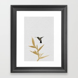 Hummingbird & Flower II Framed Art Print