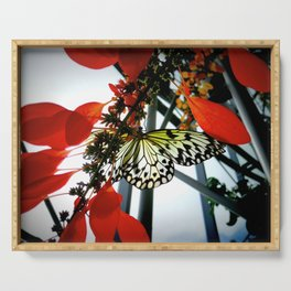 Rice Paper Butterfly Serving Tray
