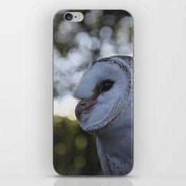 Australian Barn Owl iPhone Skin