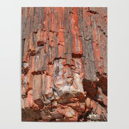 Agathe Log Texture Poster
