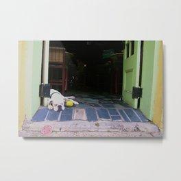 Guard Dog Metal Print