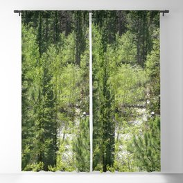 Watercolor Tree, Side, Conifer Forest 01, Mixed Conifers Abound Blackout Curtain