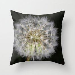 Dandelion seed ball Throw Pillow