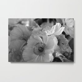 black+white poppies Metal Print