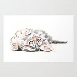 Cute Maine Coon Kitten Playing Art Print