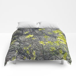 Forsythia in the Shadows Comforters