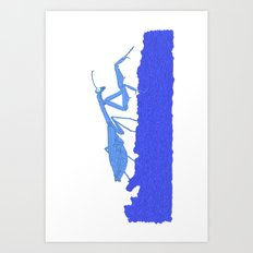 Blue Praying Mantis Art Print