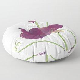 Pea- Pisello Odoroso Floor Pillow