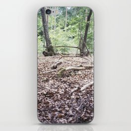 All Peace on Earth iPhone Skin