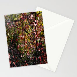 Nature's Tapestry Stationery Cards
