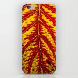 Tiger Leaf iPhone Skin