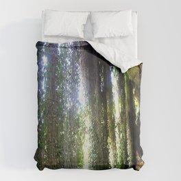 Vines camouflaging a sunken Cave Comforters