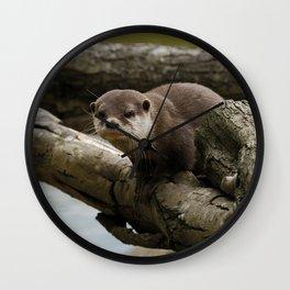 Otter On A Tree Wall Clock