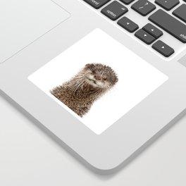 Baby Otter Portrait Sticker