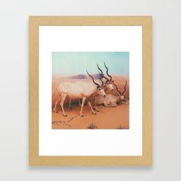 Museum Wildlife II Framed Art Print