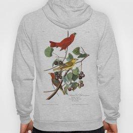 Summer red bird, Birds of America, Audubon Plate 44 Hoody
