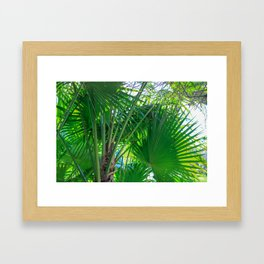Sunny Tropical Palms 1 Framed Art Print